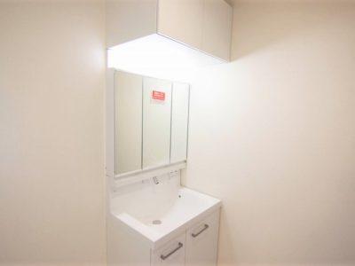 シャワー付き洗面化粧台です。シンクカウンターにつなぎ目がなくお手入れがしやすい♪(内装)